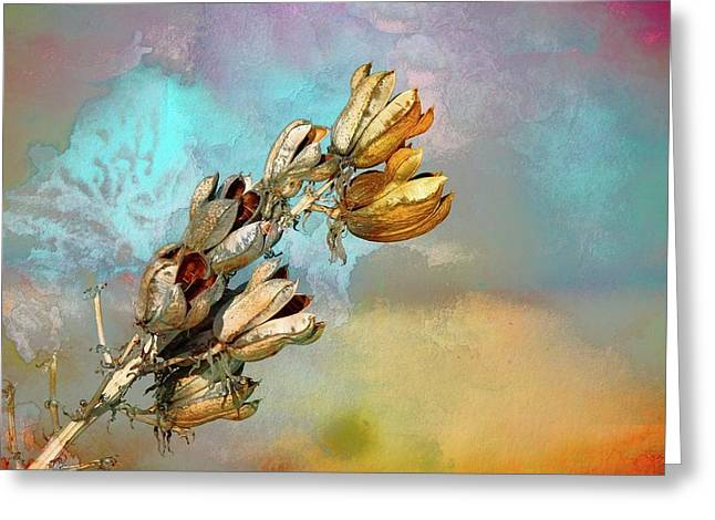 Winters Day Desert Yucca Greeting Card