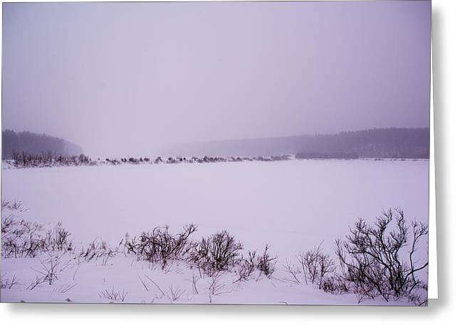 Winter's Desolation Greeting Card