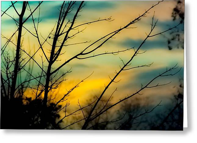 Winters Dusk Greeting Card