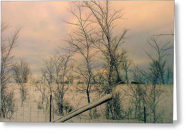 Greeting Card featuring the photograph Winter's Face by Elfriede Fulda