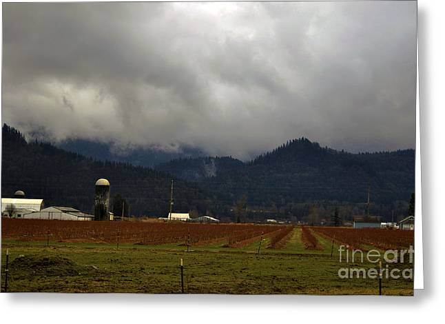 Winter's Hand Touches Sumas Greeting Card by Clayton Bruster