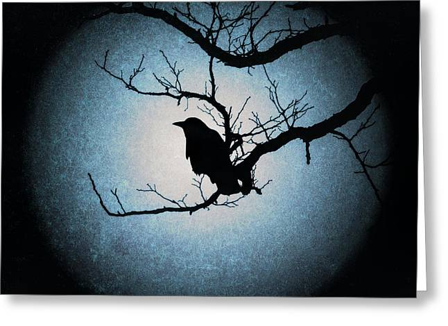Winter's Light Black Crow Silhouette  Greeting Card by Terry DeLuco