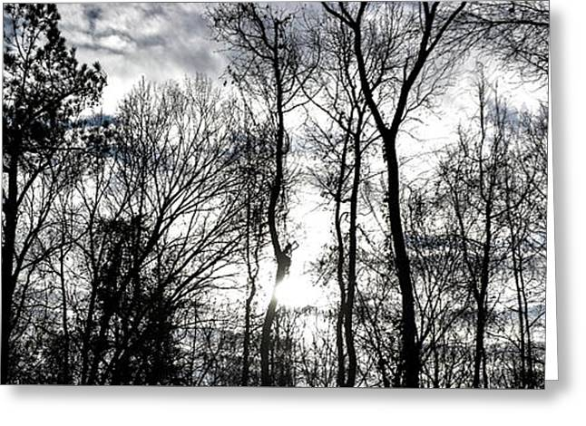 Winter's Mystic Horizon Greeting Card