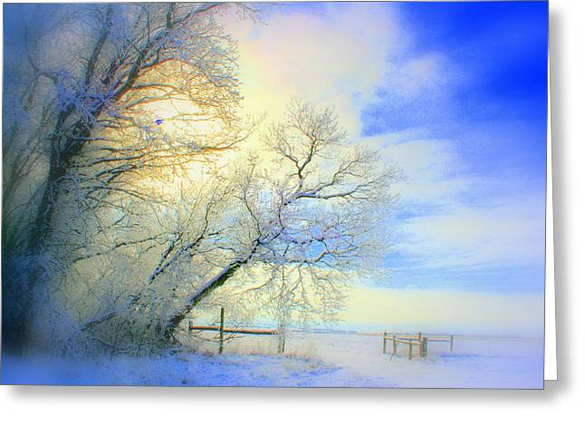 Winters Pretty Presents Greeting Card by Julie Lueders
