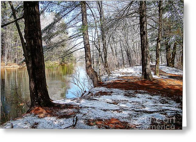 Winter's Remains Greeting Card by Betsy Zimmerli