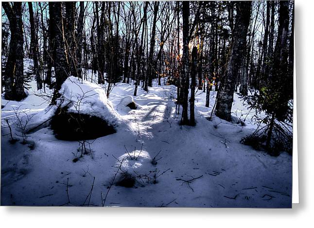 Greeting Card featuring the photograph Winters Shadows by David Patterson