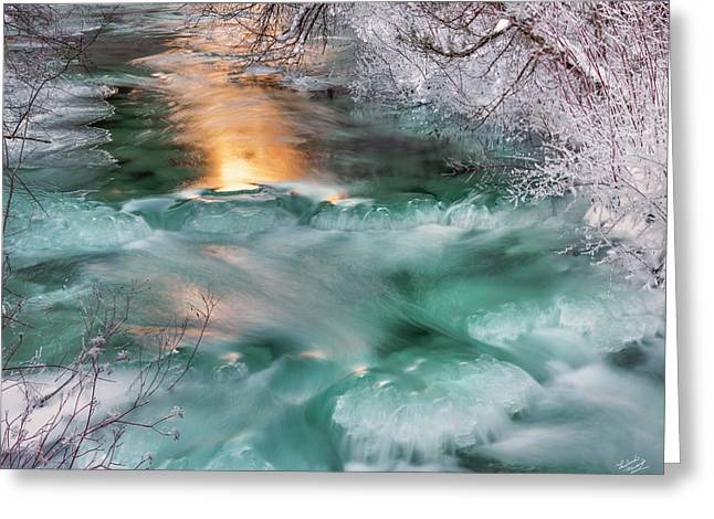 Winters Texture And Light Greeting Card by Leland D Howard