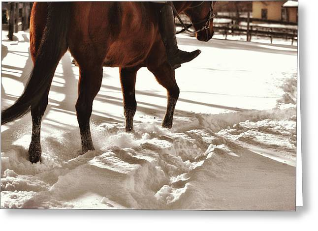 Wintertime Hack Greeting Card by JAMART Photography
