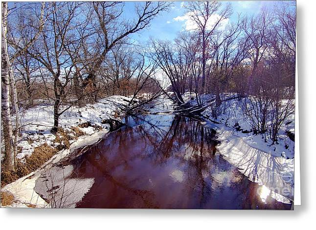 Wintertime In Necedah  Greeting Card by Ricky L Jones