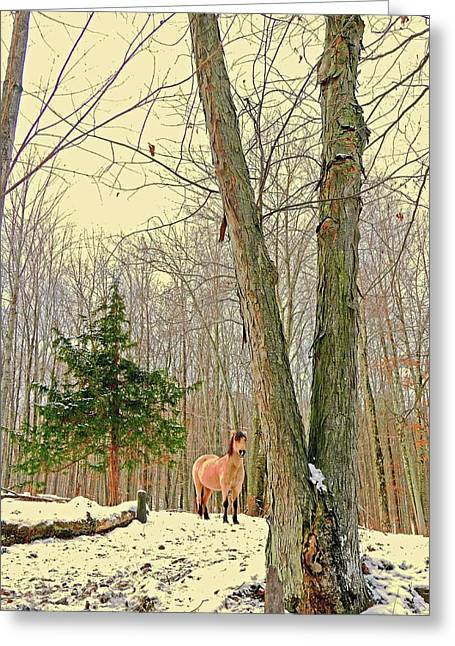 Wintertime Moment Greeting Card by Patricia Keller