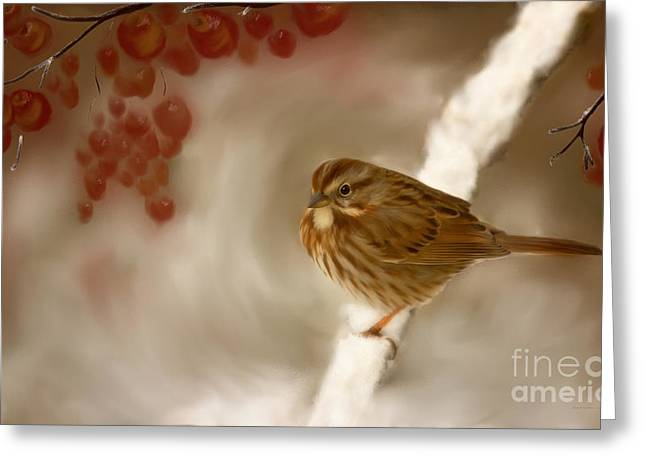 Wintertime Sparrow Greeting Card