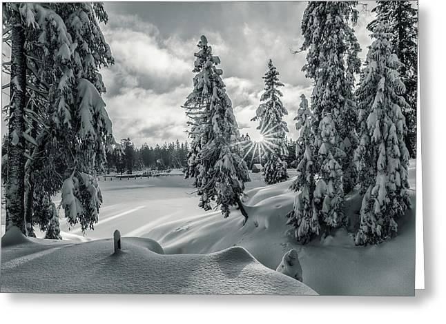 Winter Wonderland Harz In Monochrome Greeting Card