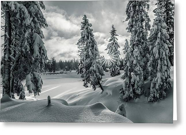 Winter Wonderland Harz In Monochrome Greeting Card by Andreas Levi