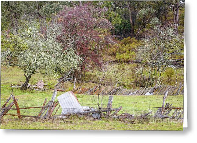 Wintery Australian Landscape 2 Greeting Card by Lexa Harpell