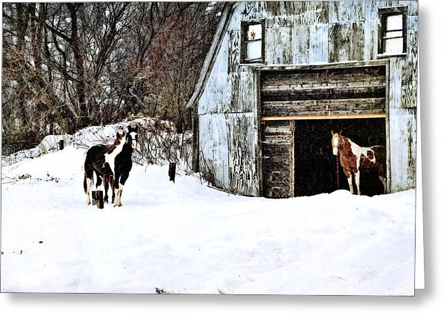 Greeting Card featuring the photograph Wintery Day by Gary Smith