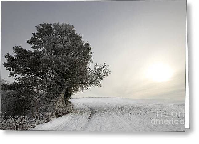 Wintery Landscape Greeting Card by Angel  Tarantella