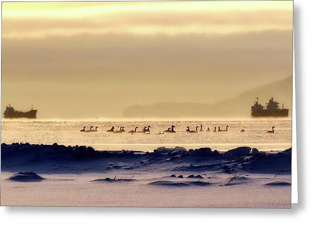 Wintry Kamchatka Russia Greeting Card by Natalia Kollegova