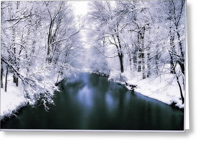 Wintry White Greeting Card by Jessica Jenney