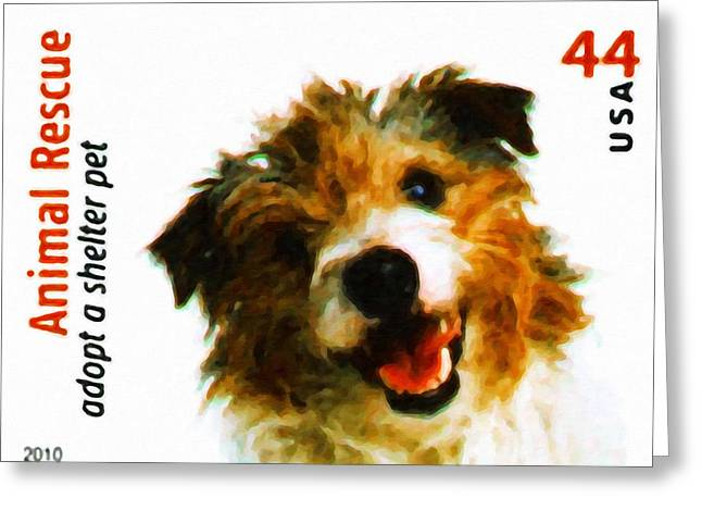 Wire-haired Jack Russell Terrier Greeting Card by Lanjee Chee