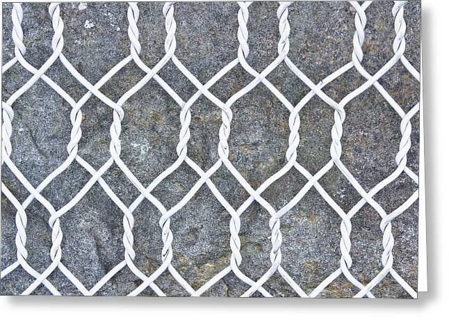 Wire Mesh Greeting Card by Tom Gowanlock