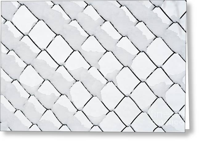 Wire Netting In Winter Greeting Card by Michal Boubin