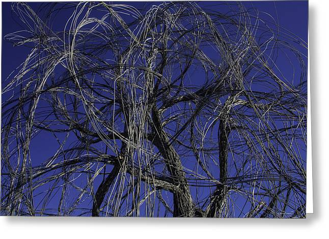Wire Tree Greeting Card