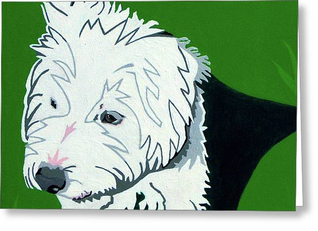 Wirehaired Jack Russell Terrier Greeting Card by Slade Roberts