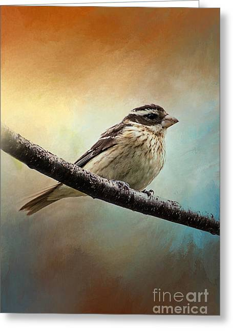 Wisconsin Songbird Greeting Card