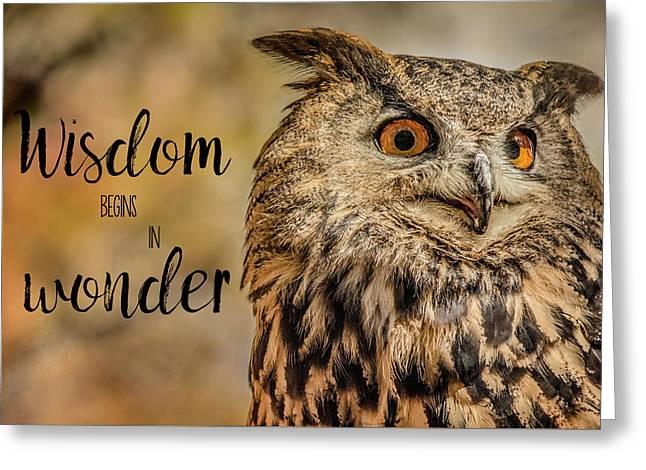 Wisdom Begins In Wonder Greeting Card by Teresa Wilson
