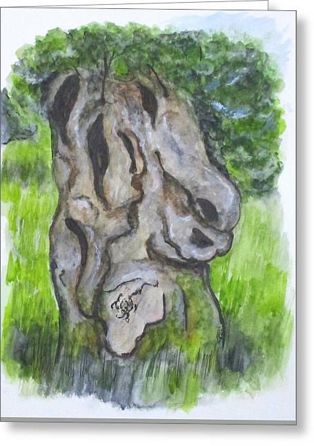 Wisdom Olive Tree Greeting Card