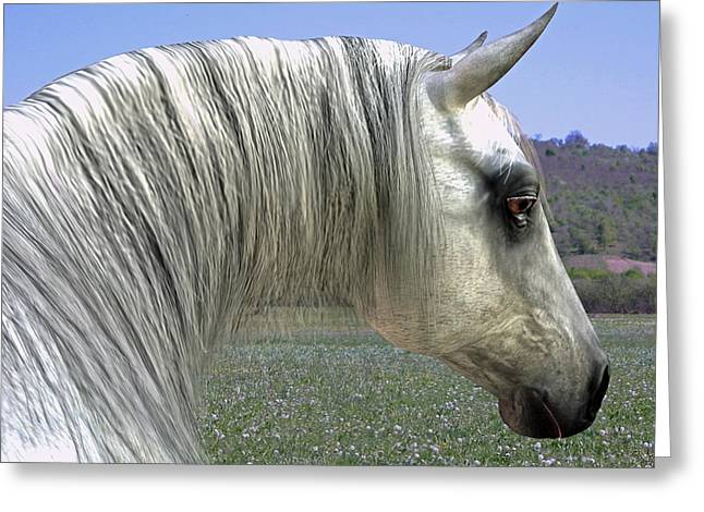 Greeting Card featuring the digital art Wise Grey Mare by Jayne Wilson