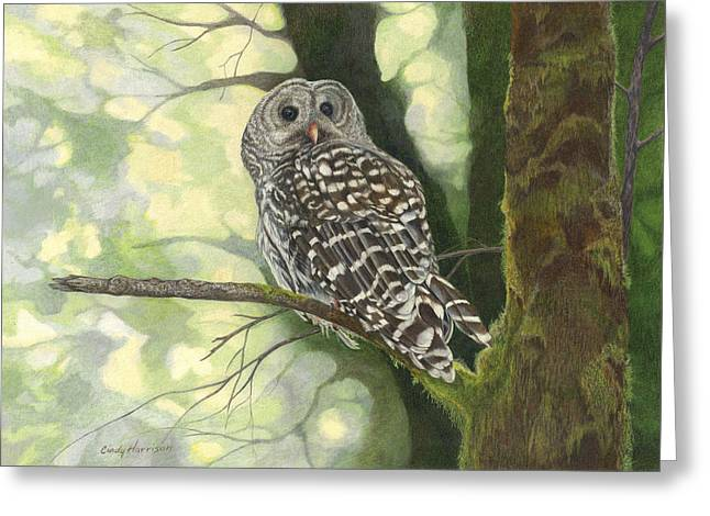 Wise Guy Greeting Card by Cindy Harrison