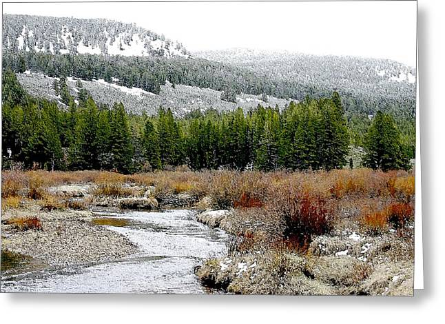 Wise River Montana Greeting Card