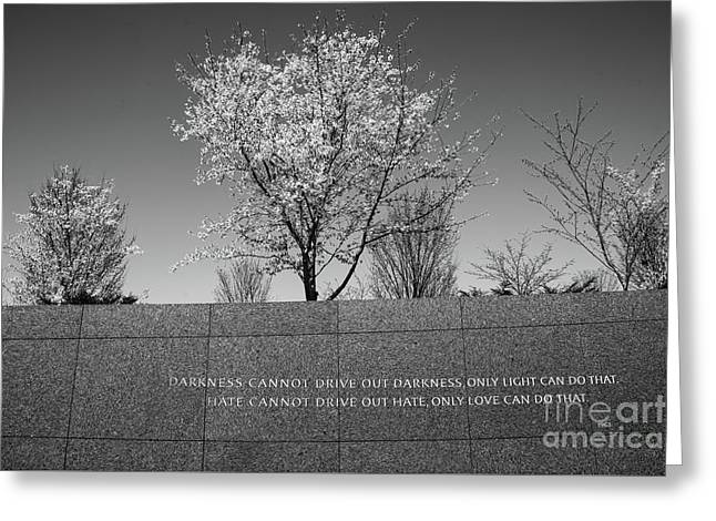 Greeting Card featuring the photograph Wise Words by Craig Leaper