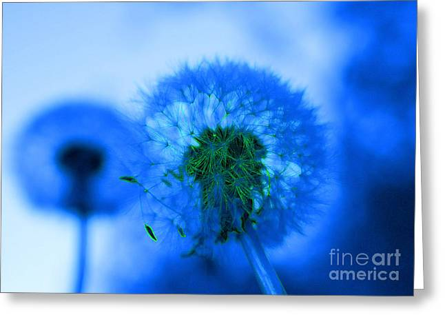 Wish Away The Blues Greeting Card by Valerie Fuqua