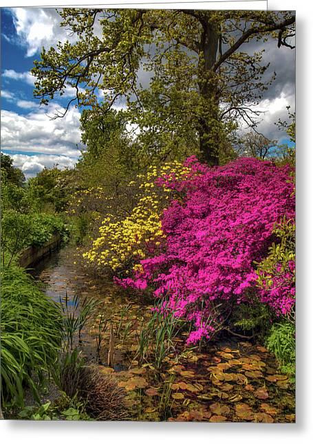 Wisley Garden Greeting Card