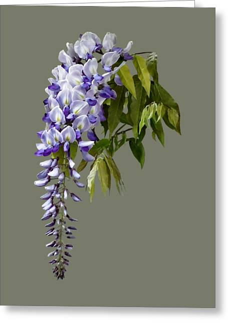 Wisteria And Leaves Greeting Card