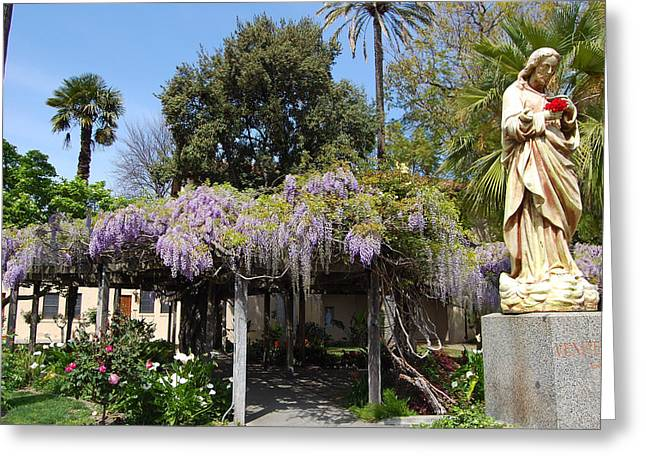 Carolyn Donnell Greeting Cards - Wisteria Blessings Greeting Card by Carolyn Donnell
