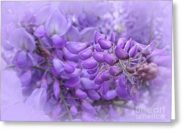 Wisteria In The Mist By Kaye Menner Greeting Card by Kaye Menner