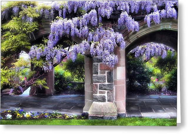 Wisteria Lane Greeting Card by Jessica Jenney