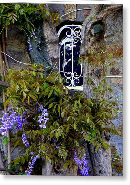 Wisteria Window Greeting Card by Lainie Wrightson