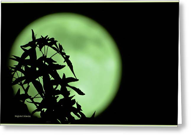 Greeting Card featuring the photograph Witching Hour by DigiArt Diaries by Vicky B Fuller