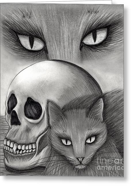Witch's Cat Eyes Greeting Card by Carrie Hawks