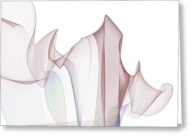 With A Flourish Greeting Card by Jim  Plaxco