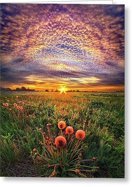 With Gratitude Greeting Card by Phil Koch