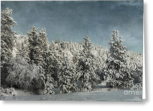 With Love - Winter  Greeting Card by Beve Brown-Clark Photography