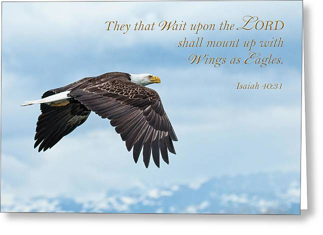 With Wings As Eagles Greeting Card