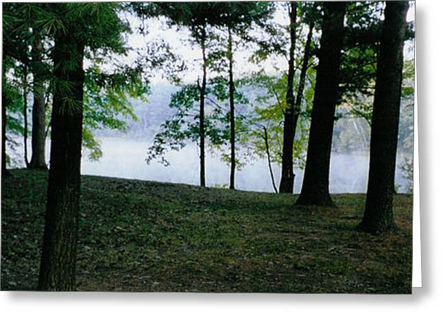 Within Sight Of A Lake Greeting Card by Tom Hefko