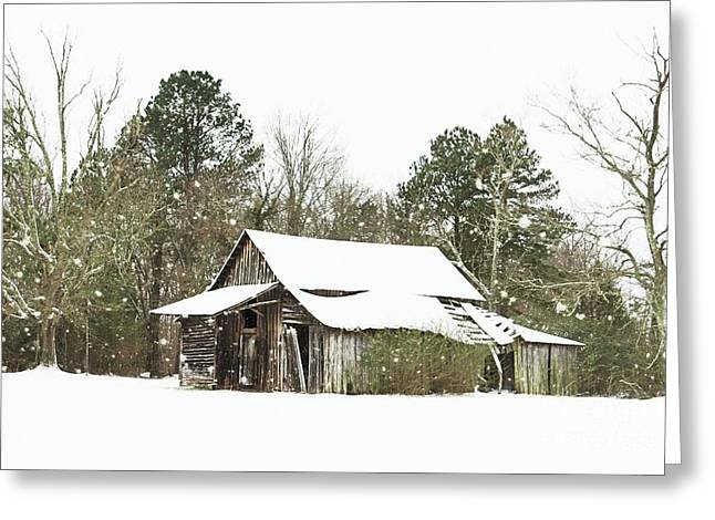Withstood Many Winters Greeting Card by Benanne Stiens