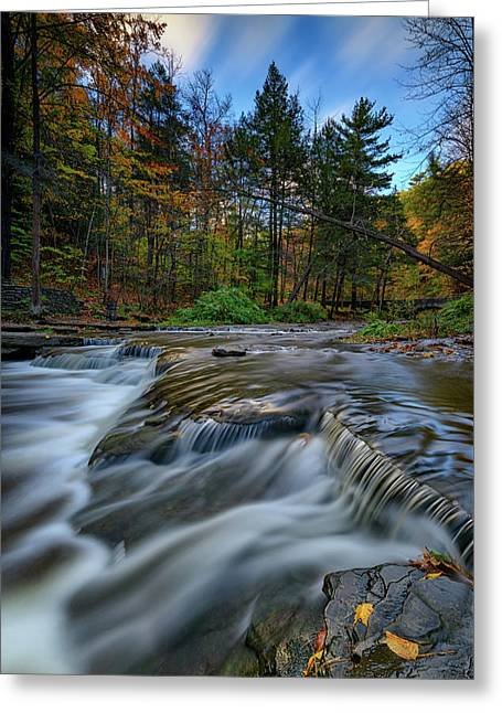 Wolf Creek Autumn Greeting Card by Rick Berk